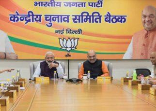 BJP declares