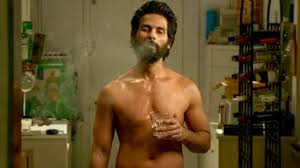 Kabir Singh Box Office Collection Day 28