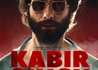Kabir Singh Box Office Collection Day 33