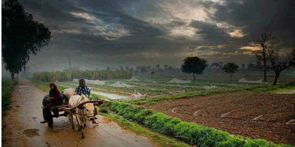 Madhya Pradesh Monsoon 0A